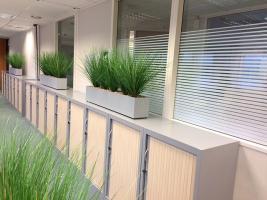Jardinières garnies, plantes artificielles